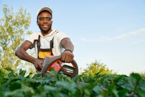6 Things About Careers in Landscaping
